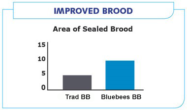 Improved brood