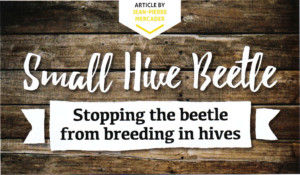 Small Hive Beetle: Stopping the beetle from breeding in the hives
